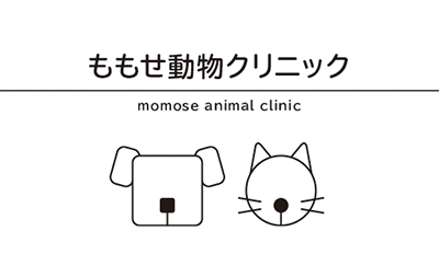 小児科や動物病院の診察券