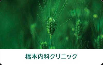 緑の植物の写真を使った診察券