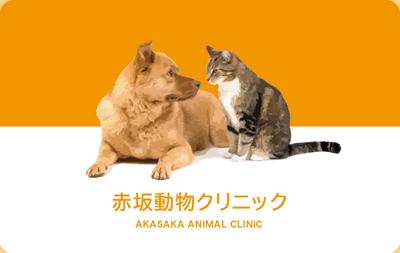 見つめ合う犬猫の診察券