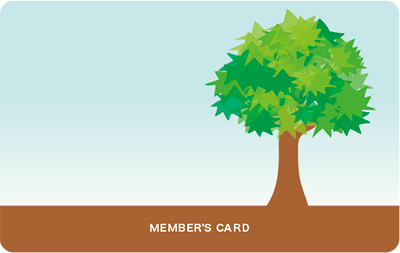 木のイラストの診察券