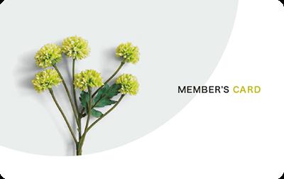 植物のビジュアルとスタイリッシュな診察券