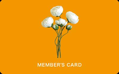 白い花のイラストの診察券