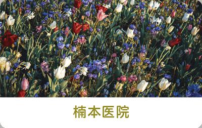 花の写真を使った診察券